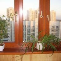 Деревянные окна_25